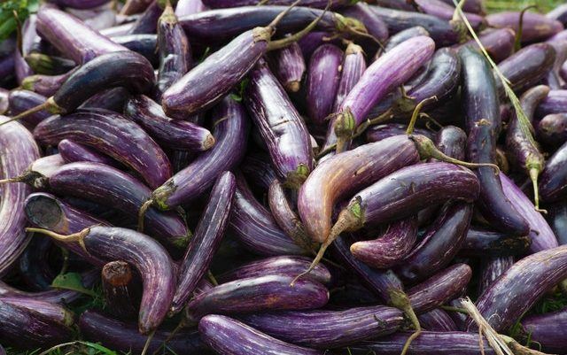 Put More Purple in Your Diet and Boost Your Health
