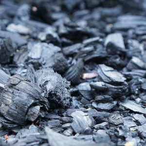 The Truth About Activated Charcoal